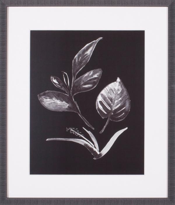 Assorted Leaves On Black I