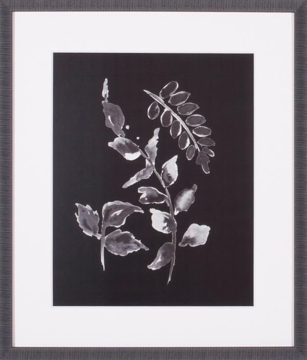 Assorted Leaves On Black II