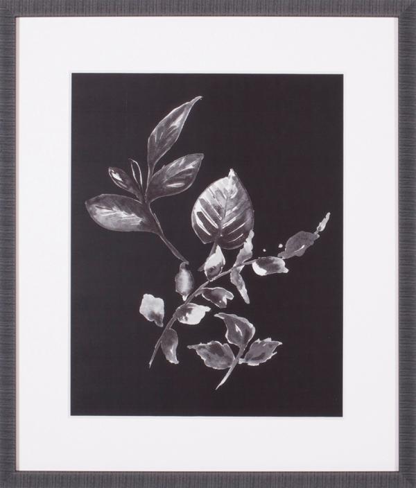 Assorted Leaves On Black III