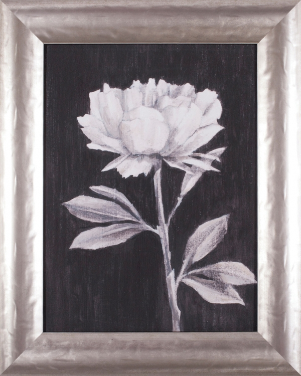 Black and White Flowers III