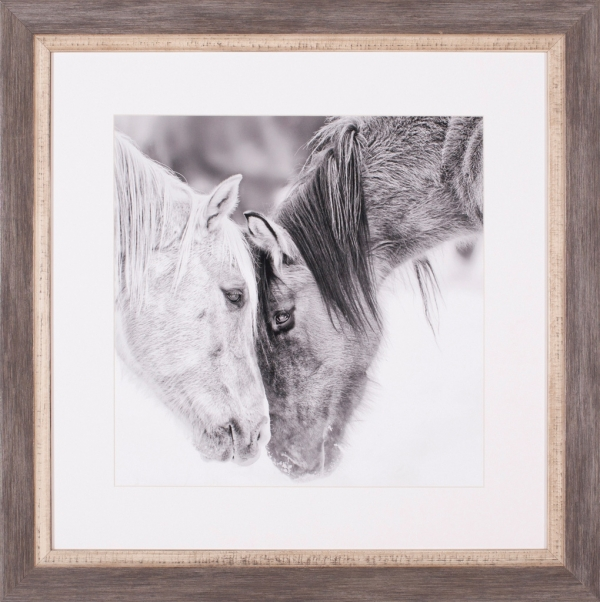 Black & White Horses VII