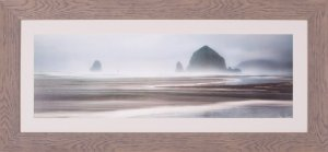 From Cannon Beach I