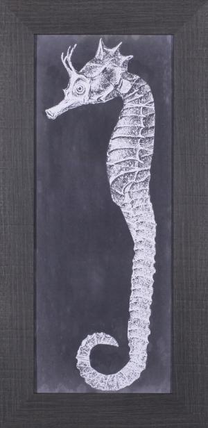 Seahorse Blueprint I