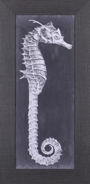 Seahorse Blueprint II
