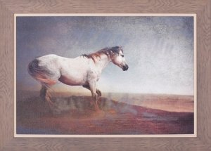 White Horse Dust Storm